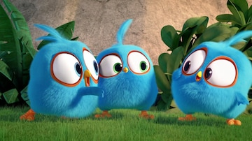 Angry Birds Blues | ICI TOU TV