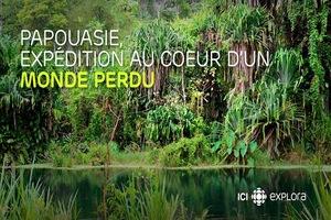 Papouasie Expedition Au Coeur D'un Monde perdu Papouasieexpeditionaucoeurdunmondeperdu